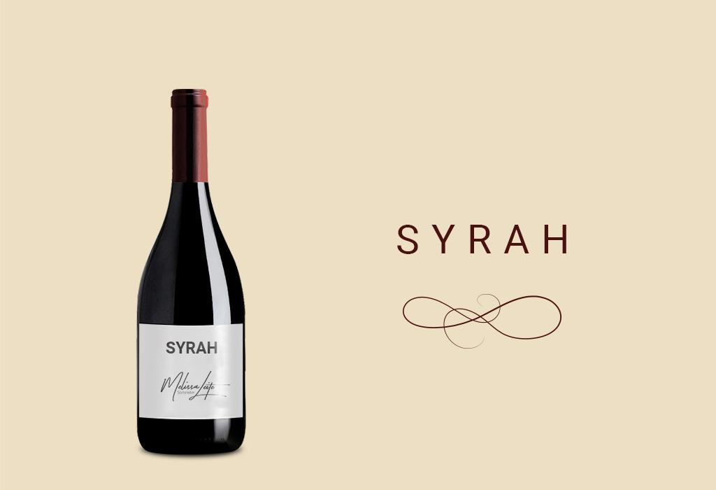 Syrah ou Shiraz – A uva do velho e novo mundo dos vinhos!